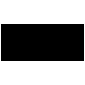 dvmsuccess partner logo