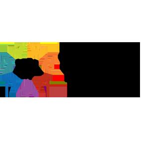 iva partner logo