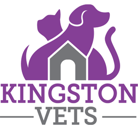 Kingston Vet member logo